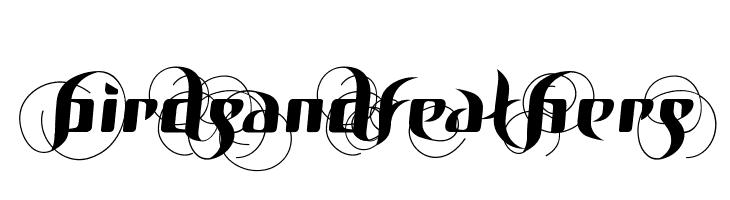 BirDSAnDFEatHerS  Free Fonts Download