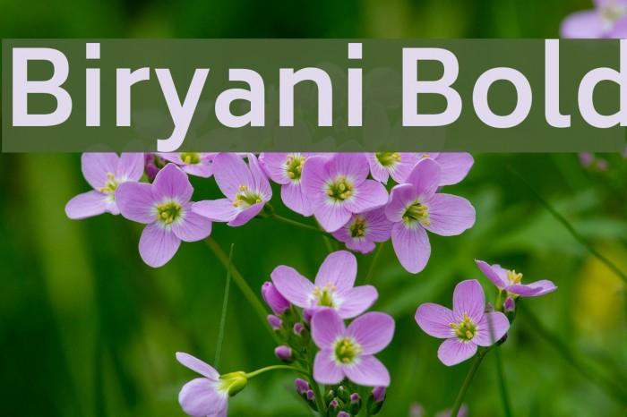 Biryani Bold Font examples