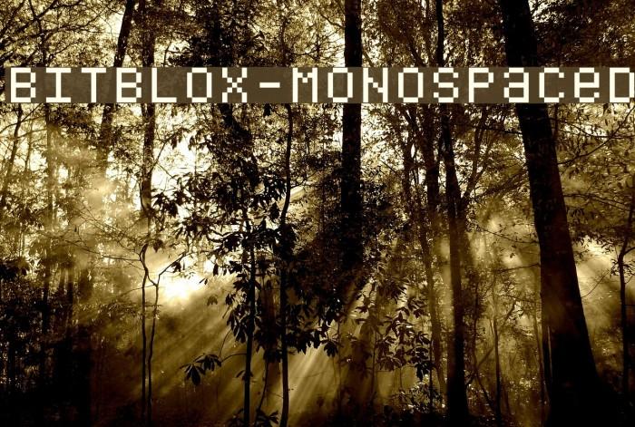 Bitblox-Monospaced Шрифта examples