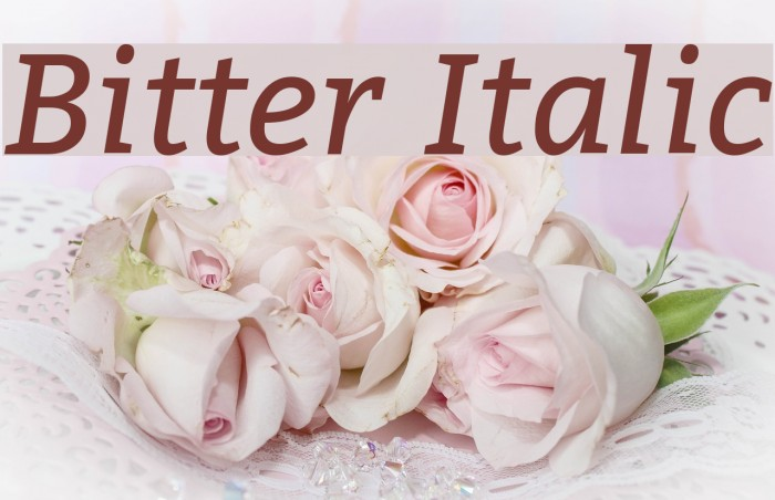 Bitter Italic Font examples