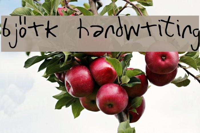 Bj�rk Handwriting Font examples