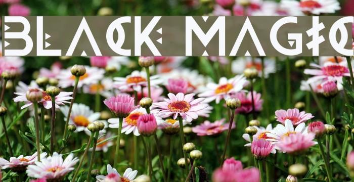 BLACK MAGIC フォント examples