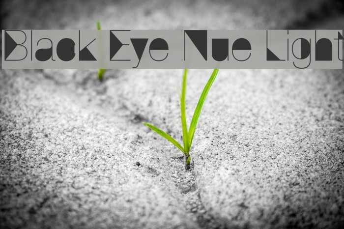 Black Eye Nue Light Font examples