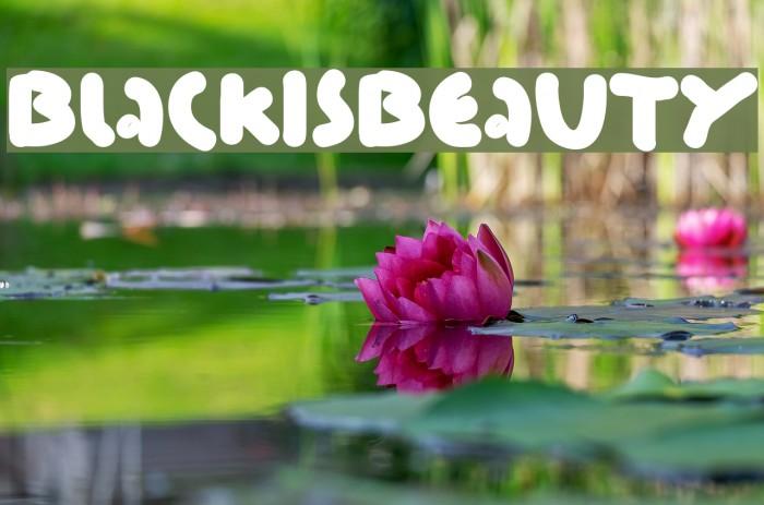 BlackIsBeauty Font examples