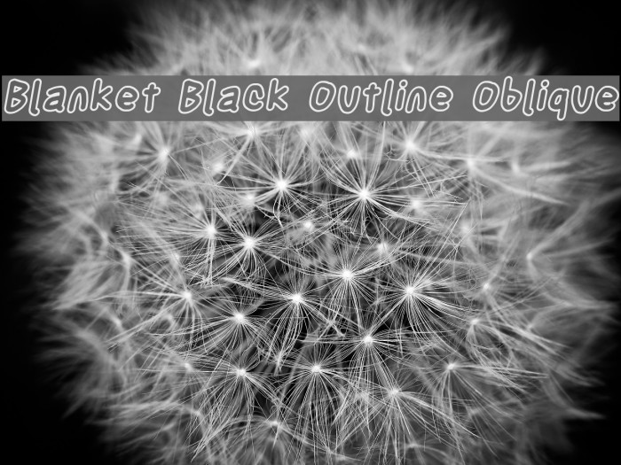 Blanket Black Outline Oblique Font examples