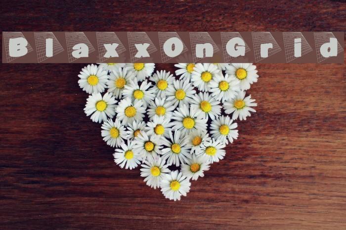 BlaxxOnGrid Font examples