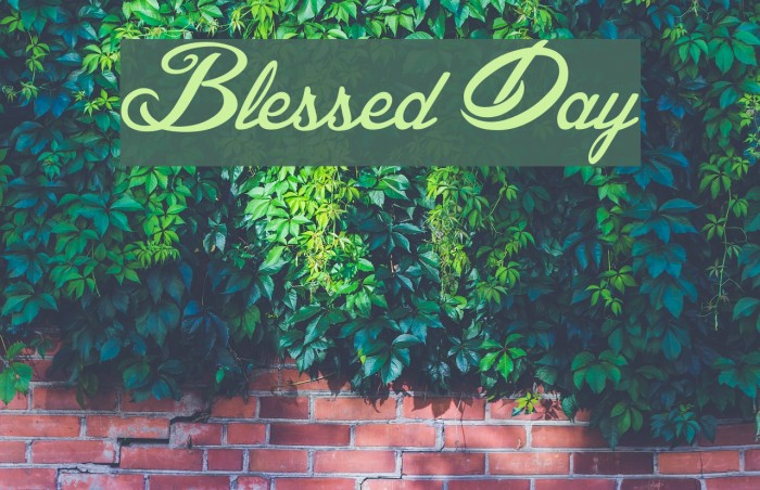 Blessed Day Font examples
