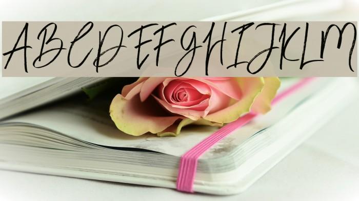 BloomyScriptFree Schriftart examples