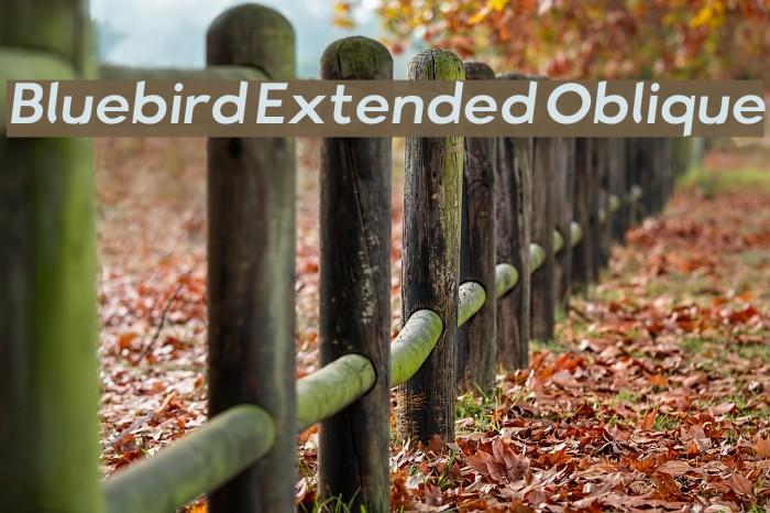 Bluebird Extended Oblique Fonte examples