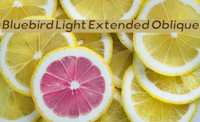 Bluebird Light Extended Oblique Fonte examples