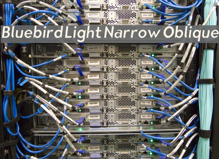 Bluebird Light Narrow Oblique Fonte examples