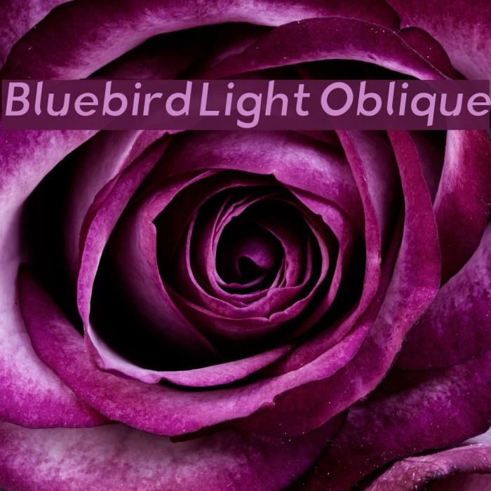 Bluebird Light Oblique Fonte examples