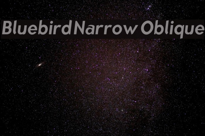 Bluebird Narrow Oblique Fonte examples