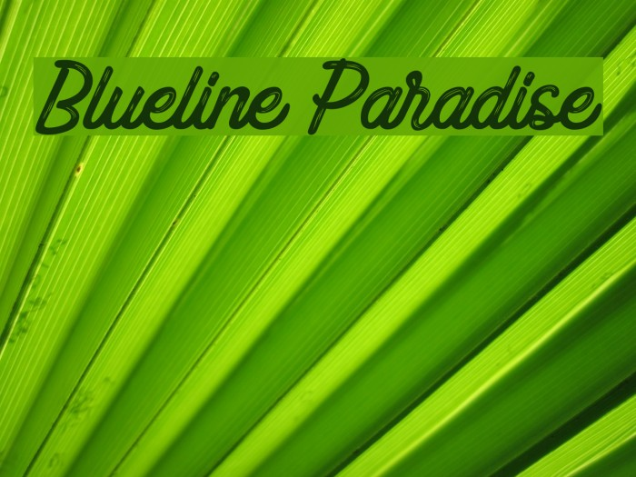 Blueline Paradise फ़ॉन्ट examples