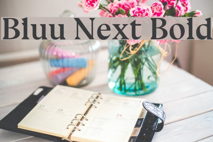 Bluu Next Bold Font examples