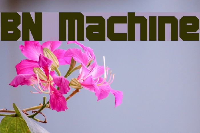 BN Machine Font examples