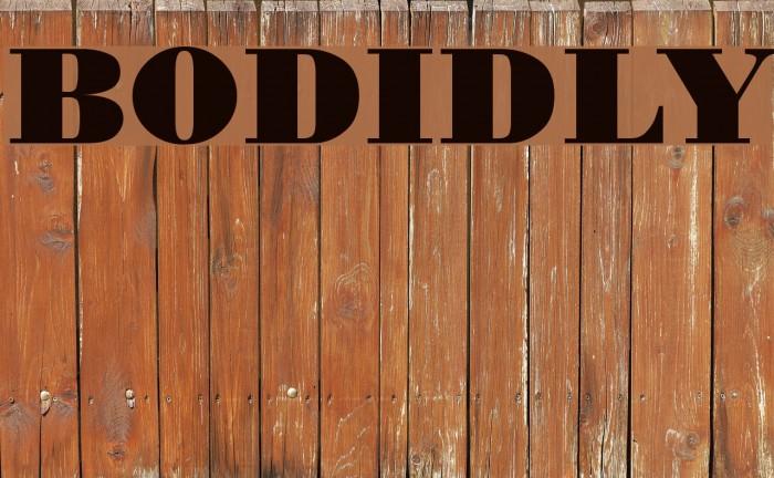 BODIDLYbold Fonte examples