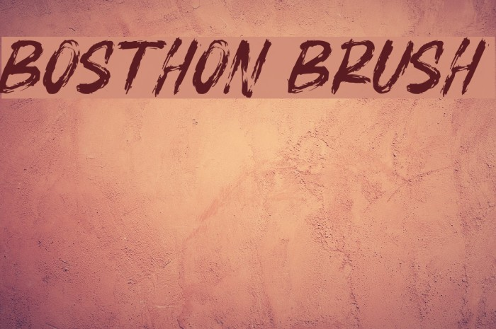 BOSTHON BRUSH Шрифта examples