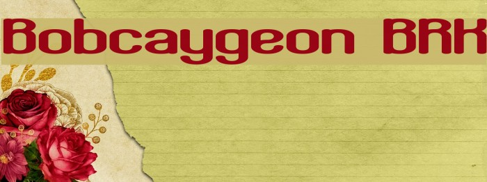 Bobcaygeon BRK Font examples