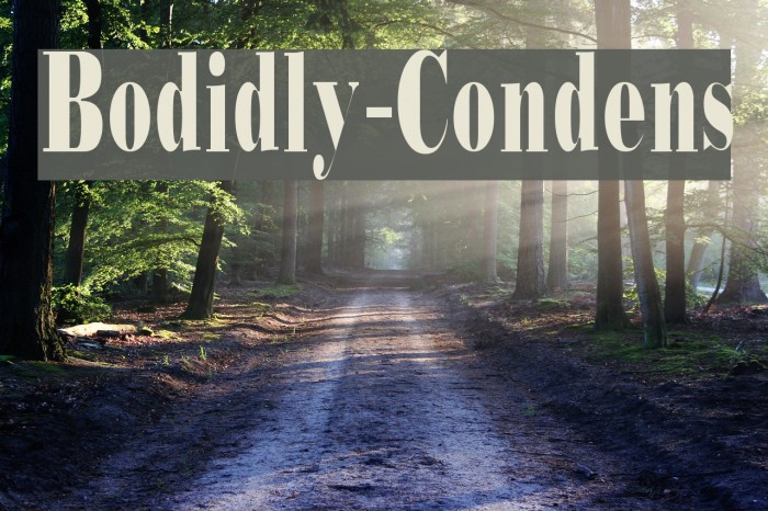 Bodidly-Condens Font examples