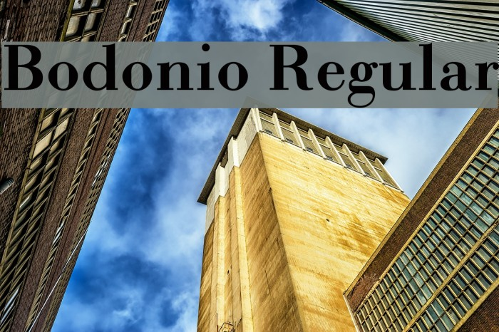 Bodonio Regular Font examples