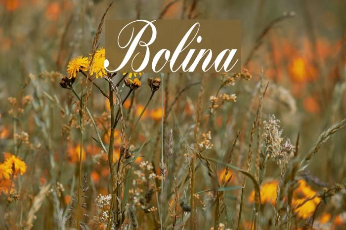 Bolina फ़ॉन्ट examples
