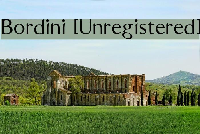 Bordini [Unregistered] Font examples