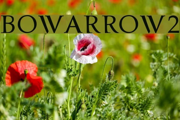 bowarrow2 Font examples