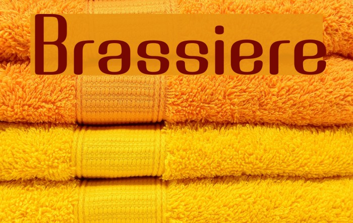 Brassiere Font examples