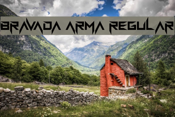 BravAda Arma Regular Caratteri examples