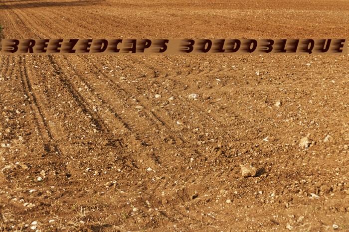 BreezedCaps BoldOblique फ़ॉन्ट examples