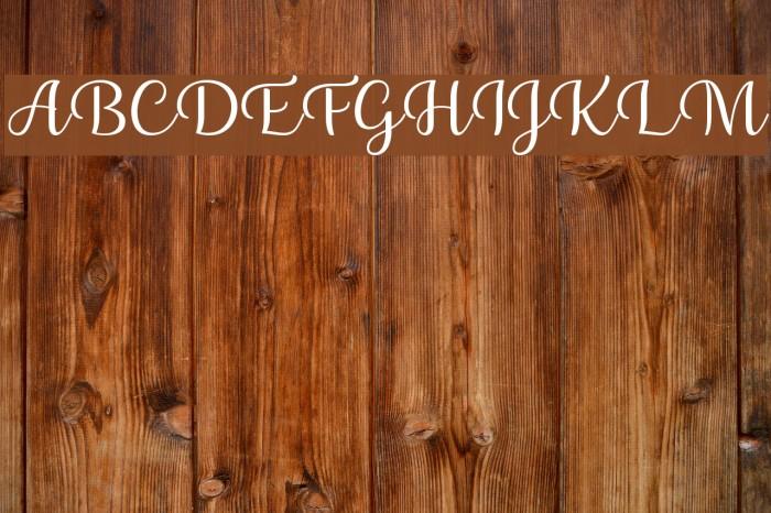 Briany Font examples