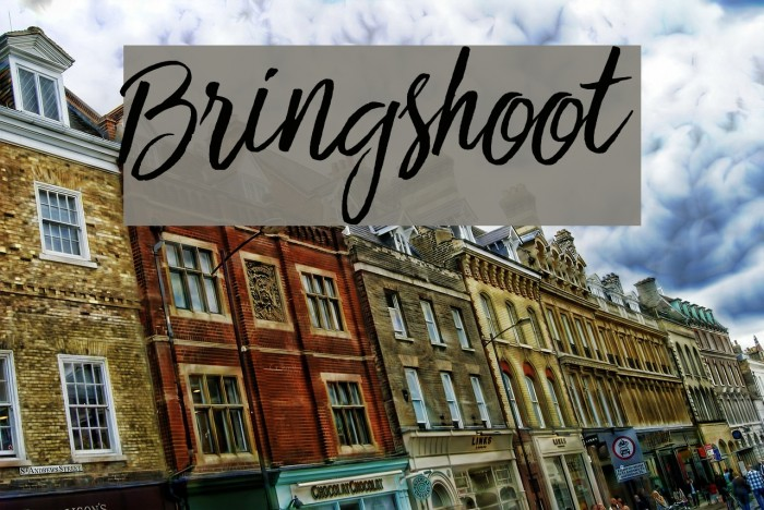 Bringshoot Шрифта examples