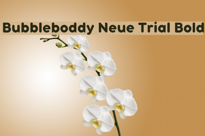 Bubbleboddy Neue Trial Bold Font examples