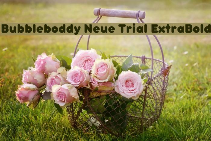 Bubbleboddy Neue Trial ExtraBold फ़ॉन्ट examples