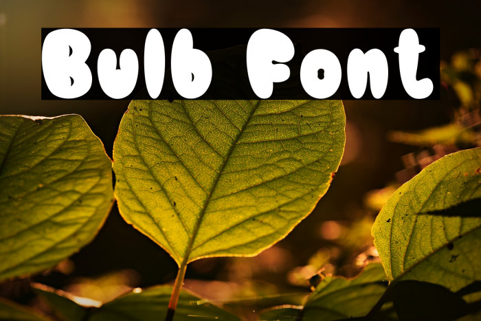 Bulb Fonte examples