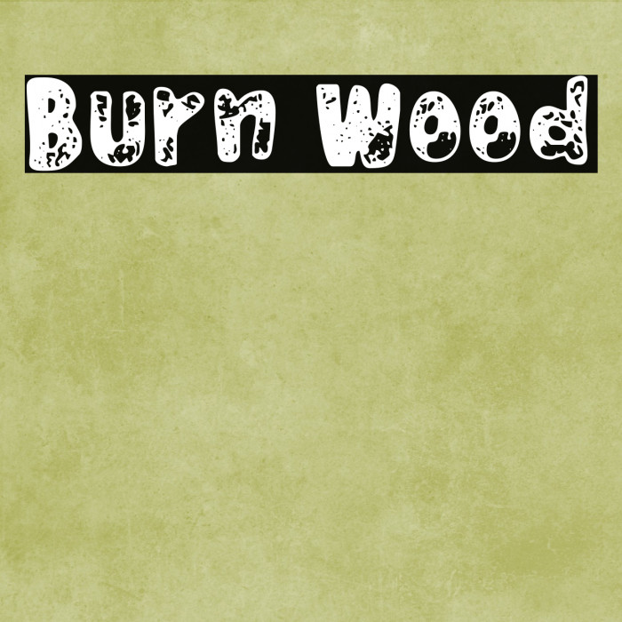 Burn Wood フォント examples