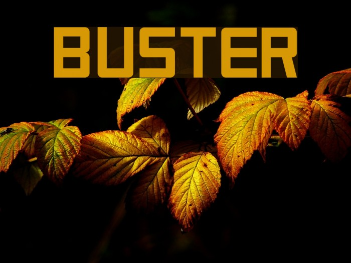Buster Font examples