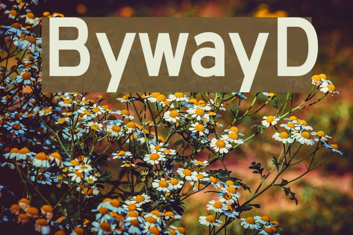 BywayD Font examples