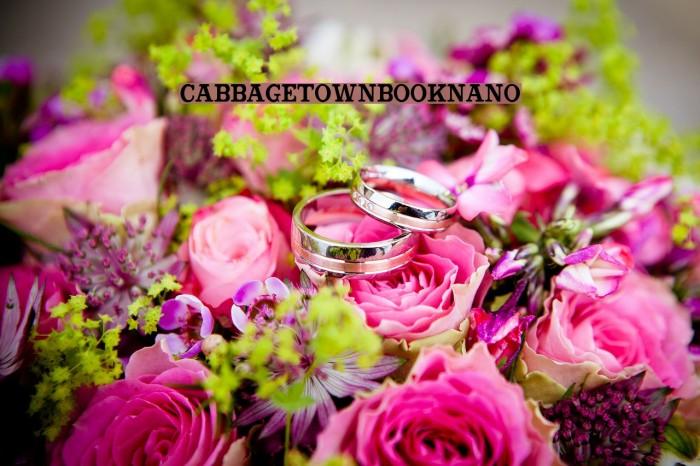 CabbagetownBookNano Font examples