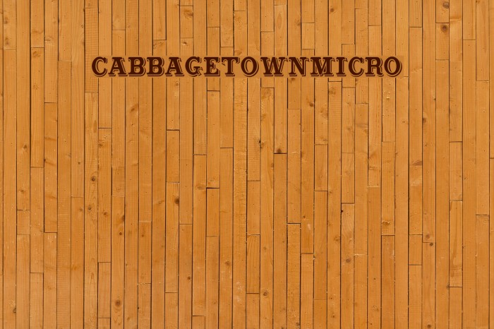 CabbagetownMicro Polices examples