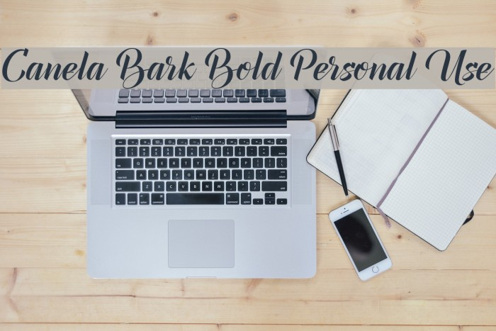 Canela Bark Bold Personal Use Font examples