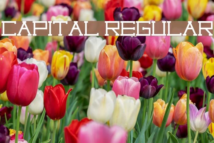 Capital regular Fonte examples