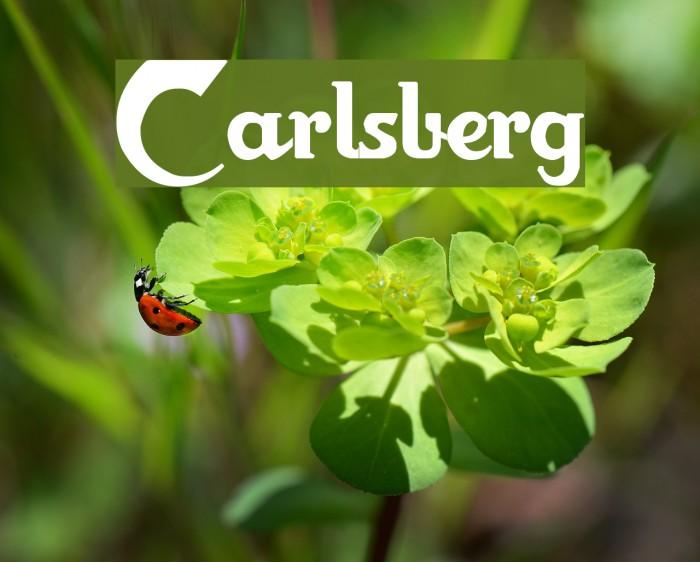 Carlsberg لخطوط تنزيل examples