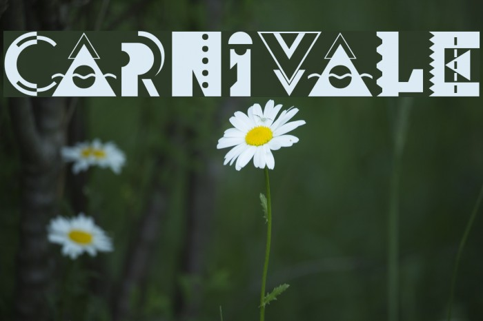 Carnivale Font examples