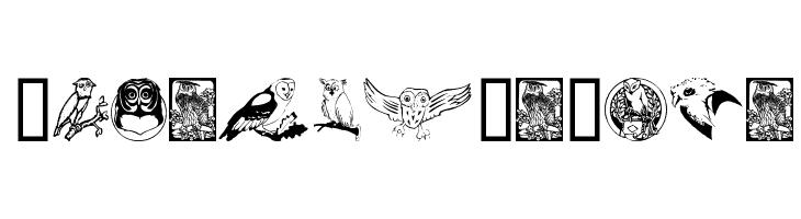 Carsten'sOwls  Скачать бесплатные шрифты
