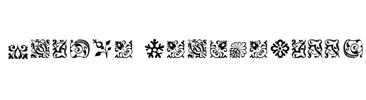 CaslonOrnamentsSSK Font