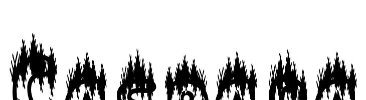 Caspana Font