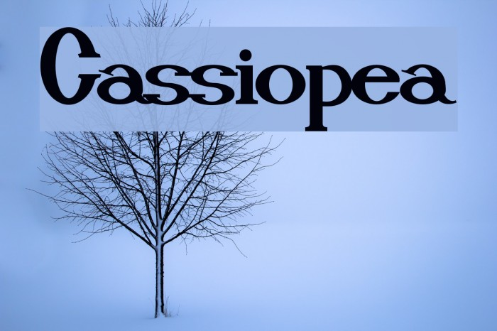 Cassiopea Font examples