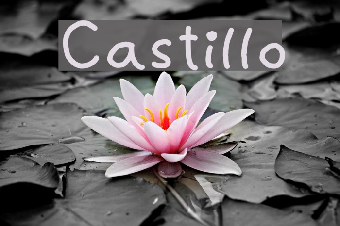 Castillo Fonte examples